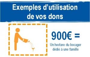 Ferme_de_guie_infographie4